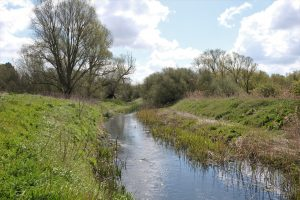 Sunny photo of the River Lark